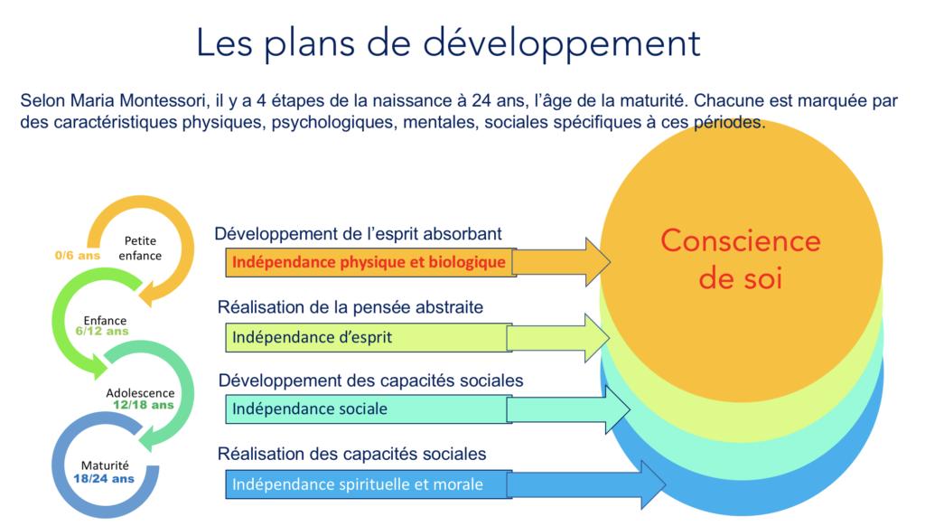 Stades de développement selon Montessori